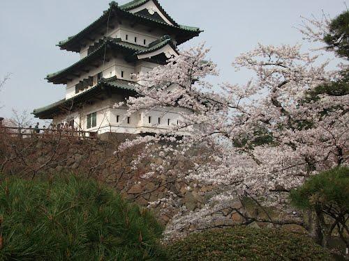 จุดชมวิวซากุระ-รอบปราสาทฮิโรซากิ