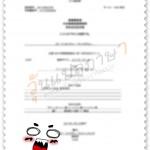 ใบทะเบียนพาณิชย์-พค.0403-แปลไทย-ญี่ปุ่น