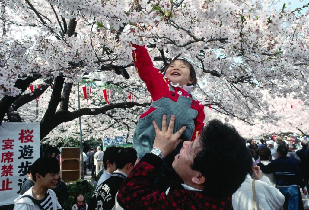 จุดชมซากุระ-UenoPark-1024x695