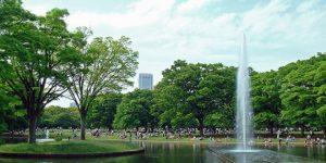 800px-Fountain_Yoyogipark-660x330
