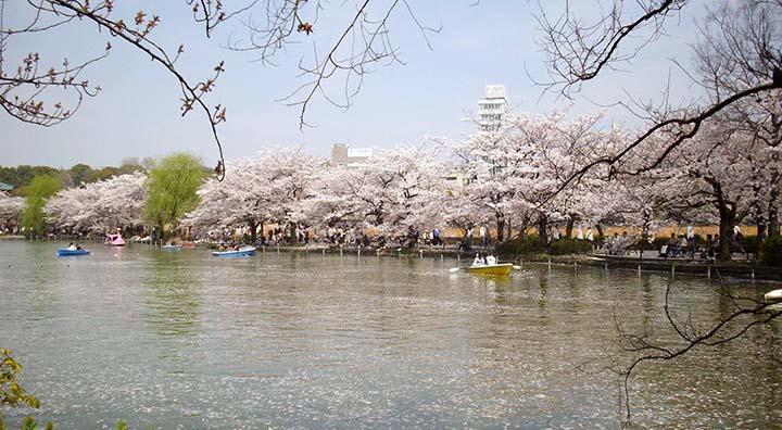 ueno-park-02